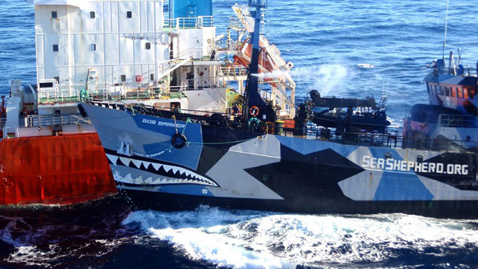 The Sea Shepherd ship Bob Barker (R) colliding with the Japanese whaling fleet fuel tanker the San Laurel. (AFP Photo)