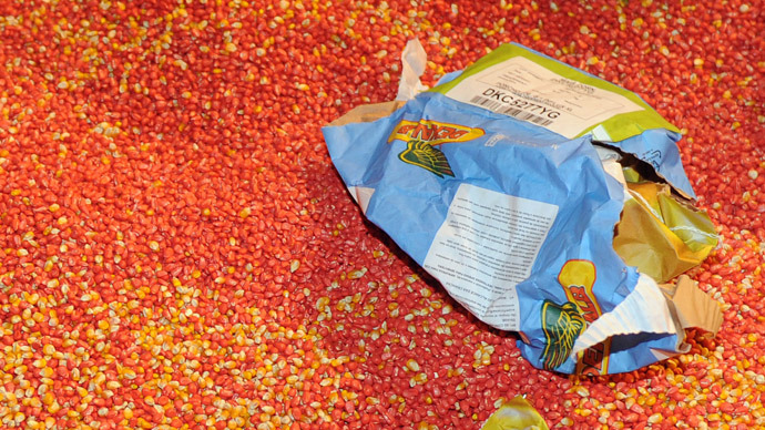 """Bags containing """"MON 810"""", a variety of genetically modified maize (corn) developed by Monsanto Company have been ripped opened by anti-GMO activists on January 23, 2012 at a Monsanto storehouse in Trebes near Carcassonne, southern France, during an action to call for the ban of this product. (AFP Photo)"""