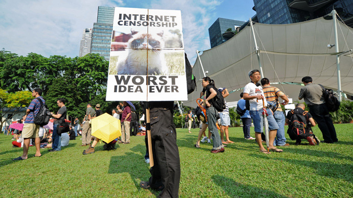 A protester stands with a placard during a rally at a free-speech park called Speakers' Corner in Singapore on June 8, 2013 (AFP Photo / Roslan Rahman)
