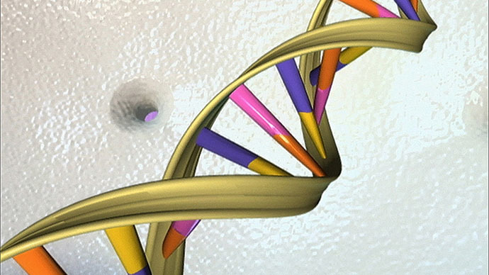 This undated handout illustration shows the DNA double helix (AFP Photo)