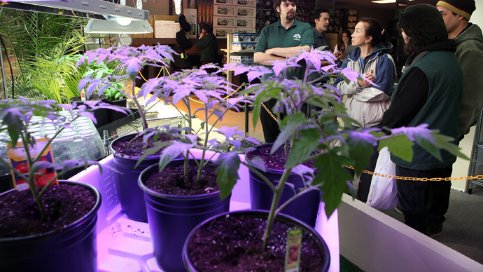 Medicinal marijuana dispensary in Washington DC (AFP Photo /  Alex Wong)