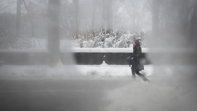 A woman is pictured though a steamy bus window as she walks along 5th Avenue at Central Park in New York February 5, 2014. (Reuters / Carlo Allegri)