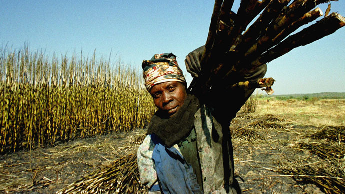 Most slaves were brought to the Caribbean to work on sugar plantations (Reuters/Mike Hutchings)