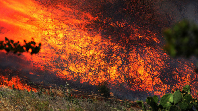 A bush is fully engulfed at the Ranch Fire near San Diego, California May 13, 2014.(Reuters / Sandy Huffaker)
