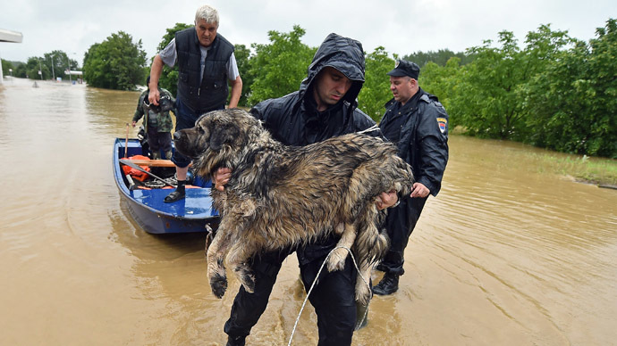 A Serbian emergency services worker evacuates a dog from floodwaters in the town of Obrenovac, 40 kilometers west of Belgrade, on May 16, 2014. (AFP Photo/Andrej Isakovic)