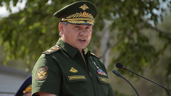 Russian Defense Minister Sergey Shoigu (RIA Novosti / Artem Zhitenev)