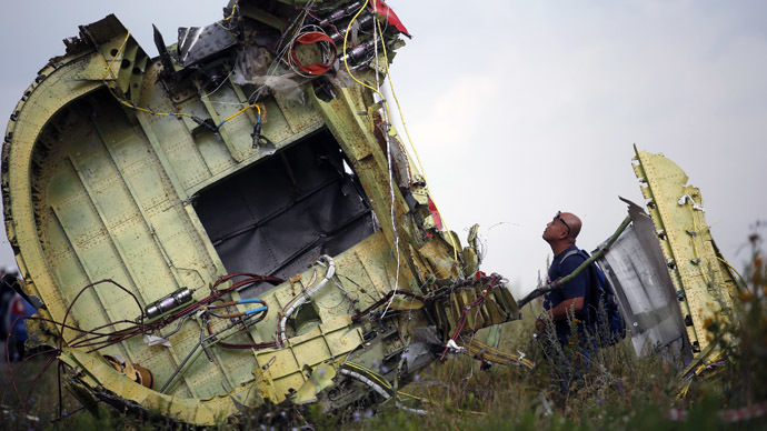 A Malaysian air crash investigator inspects the crash site of Malaysia Airlines Flight MH17, near the village of Hrabove (Grabovo), Donetsk region July 22, 2014. (Reuters/Maxim Zmeyev)