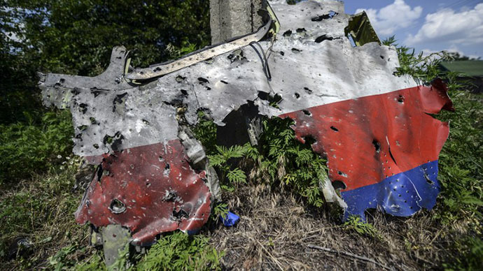 A part of the fuselage of the downed Malaysia Airlines flight MH17 is pictured in a field near the village of Grabove, in the Donetsk region, on July 23, 2014. (AFP Photo / Bulent Kilic)