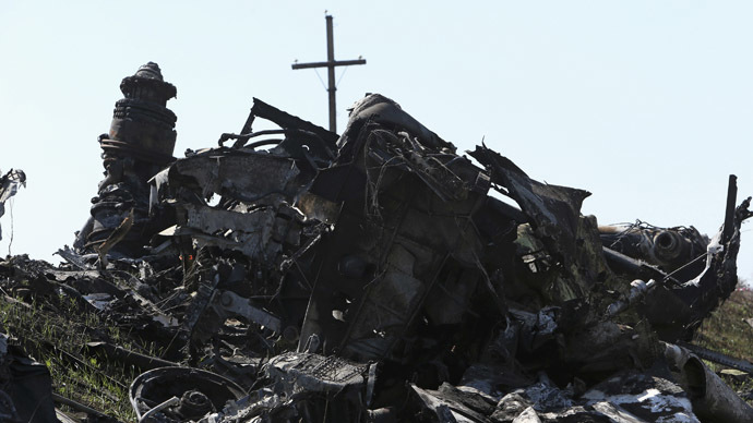 Parts of wreckage are seen at the site where the downed Malaysia Airlines flight MH17 crashed, near the village of Rozsypne (Rassypnoye) in Donetsk region, eastern Ukraine August 1, 2014. (Reuters/Sergei Karpukhin)