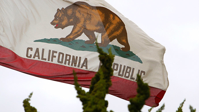 California flag (Reuters / Lucy Nicholson)