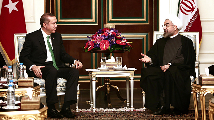 Iranian President Hassan Rouhani (R) meets with Turkish Prime Minister Recep Tayyip Erdogan (L) at Tehran's Saadabad palace on January 29, 2014. (AFP Photo / Behrouz Mehri)