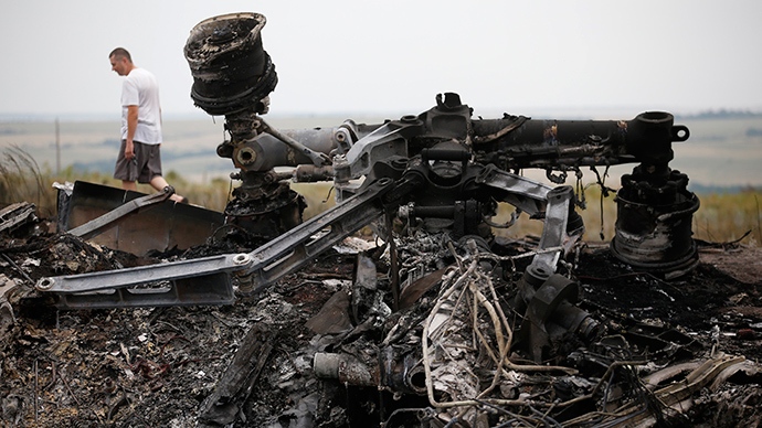 Debris is pictured at the site of Thursday's Malaysia Airlines Boeing 777 plane crash, near the village of Grabovo in the Donetsk region July 18, 2014 (Reuters / Maxim Zmeyev)