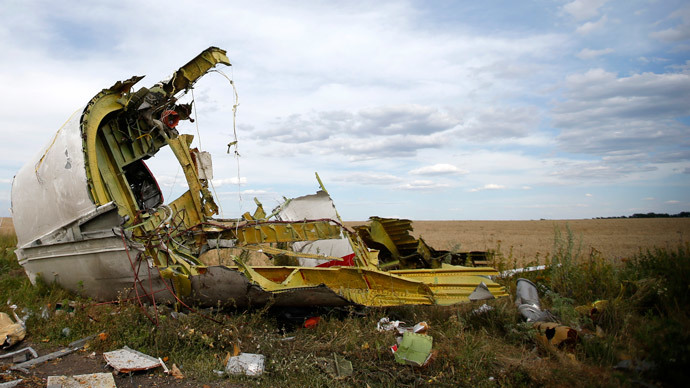 A part of the wreckage is seen at the crash site of the Malaysia Airlines Flight MH17 near the village of Hrabove (Grabovo), in the Donetsk region July 21, 2014. (Reuters / Maxim Zmeyev)