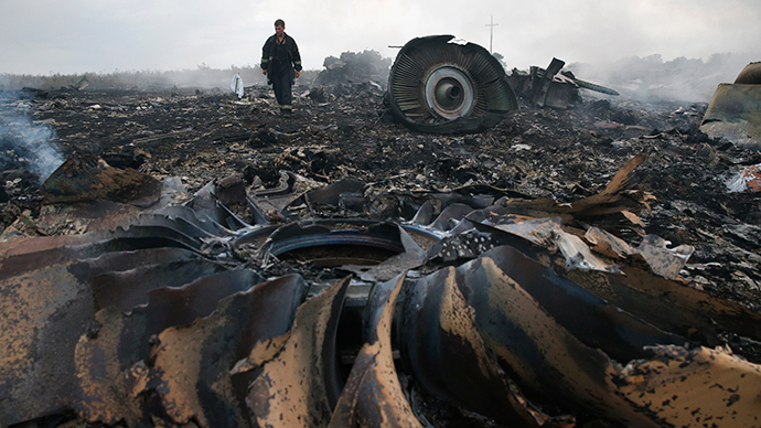 An Emergencies Ministry member walks at a site of a Malaysia Airlines Boeing 777 plane crash near the settlement of Grabovo in the Donetsk region, July 17, 2014 (Reuters / Maxim Zmeyev)