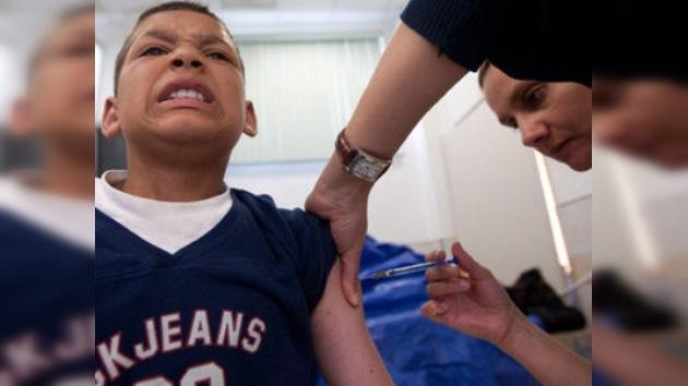 Confirman 1.306 casos de gripe porcina en Venezuela