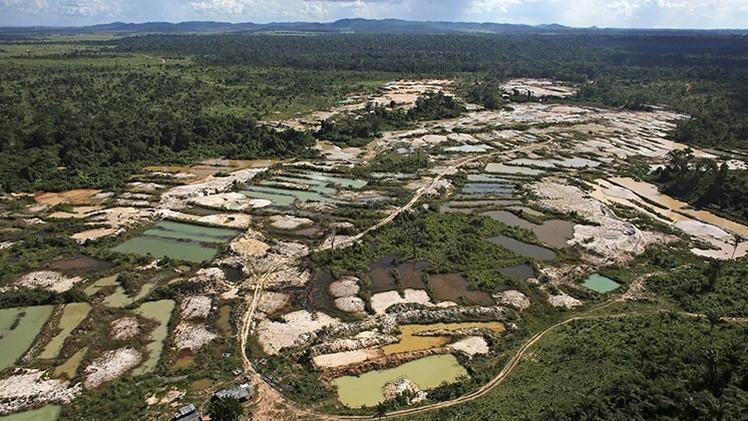 Una nueva 'fiebre de oro' amenaza a los bosques en Sudamérica
