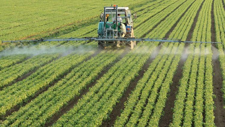 Estudio: Herbicidas de Monsanto dañan el ADN