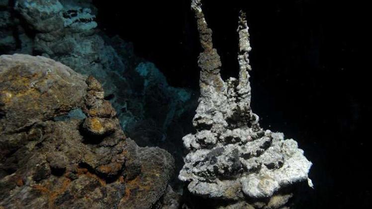Científicos: Descubren un eslabón perdido en la evolución
