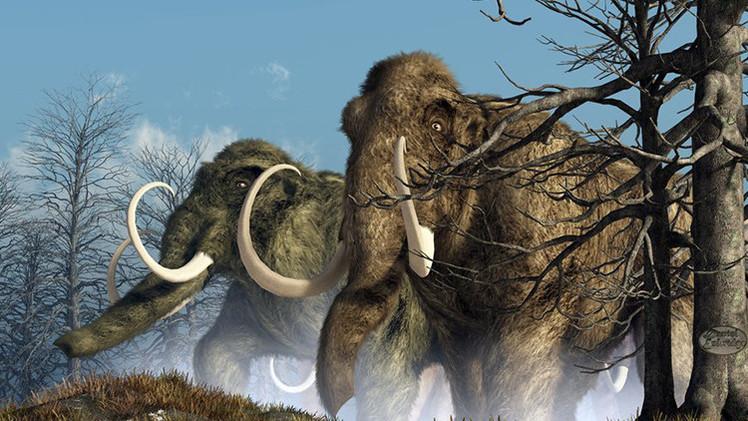 ¿Un Parque Jurásico real?: Científicos podrían revivir a los mamuts en Siberia