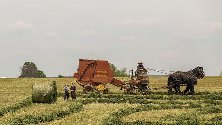 Un agricultor ruso expulsa a las autoridades de su pueblo e introduce su propia moneda