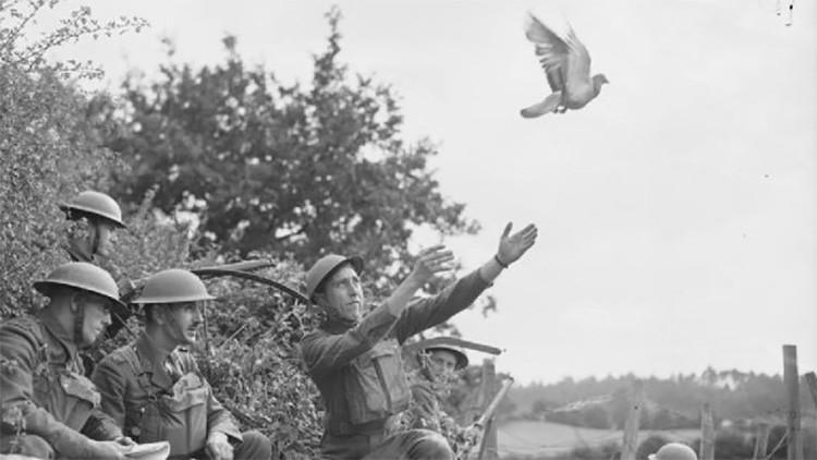 Anticuadas pero eficaces: Armas y tácticas de baja tecnología usadas en la Segunda Guerra Mundial