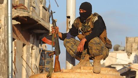 """Senador estadounidense: """"Si EE.UU. deja de armar y entrenar a los yihadistas, la guerra acabará"""""""
