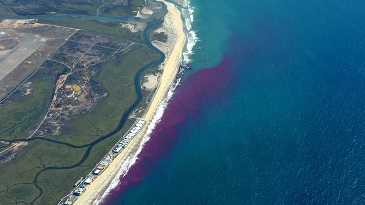 Descubra por qué científicos de EE.UU. tiñeron el océano de rosa