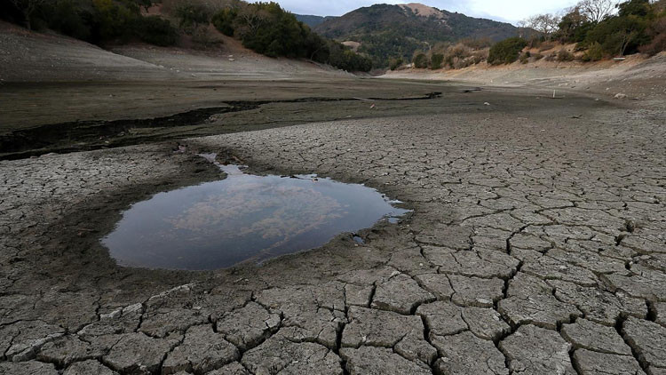 ¿Qué nos depara el año nuevo?:El mundo está al borde del hambre y la escasez de agua es inminente