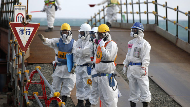 Por los siglos de los siglos: catástrofe de Fukushima provoca innumerables mutaciones genéticas