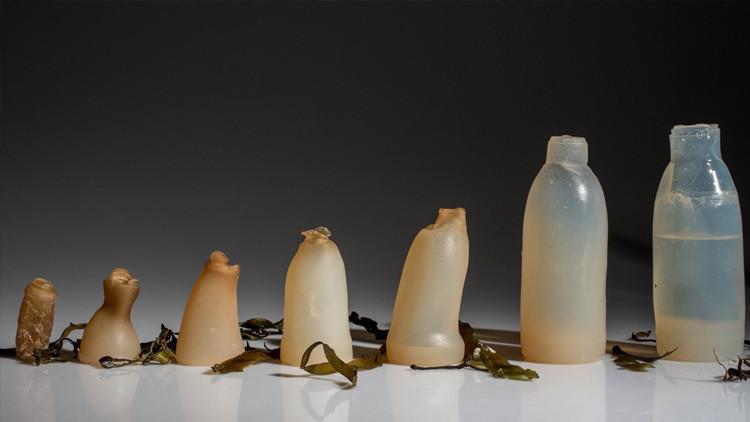 A mordiscos contra el plástico: Crean botellas biodegradables de gelatina que se comen