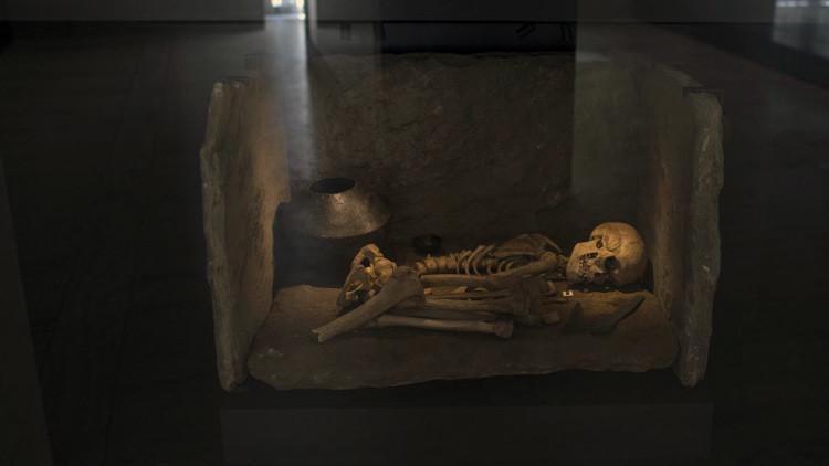 La mitad de los hombres de Europa occidental descienden de un 'rey' de la Edad de Bronce