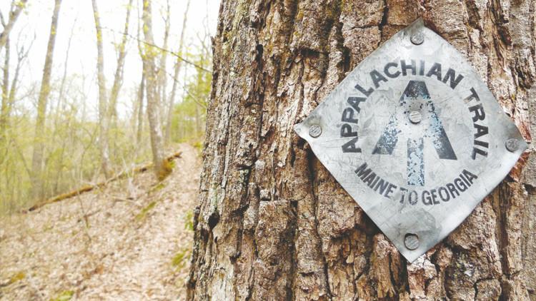 """""""Si hallan mi cuerpo, llamen a mi marido"""": Publican diario de una senderista desaparecida en EE.UU."""