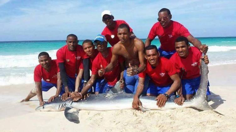 Arrastran a un tiburón a la playa para tomarse fotos con él y lo matan (fotos, video)