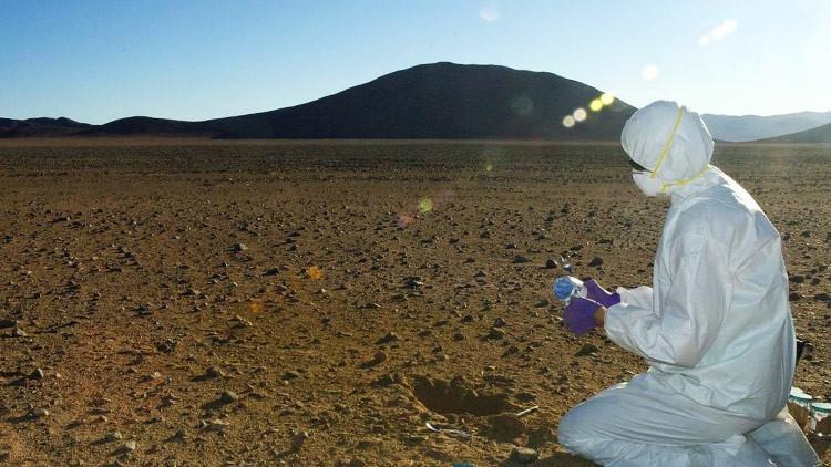 El fósil más antiguo jamás encontrado podría ayudar a encontrar vida en Marte
