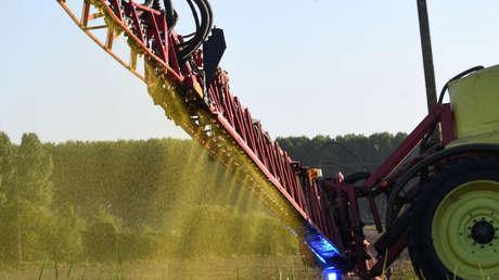Un agricultor fumiga cultivos con herbicida a base de glifosato.