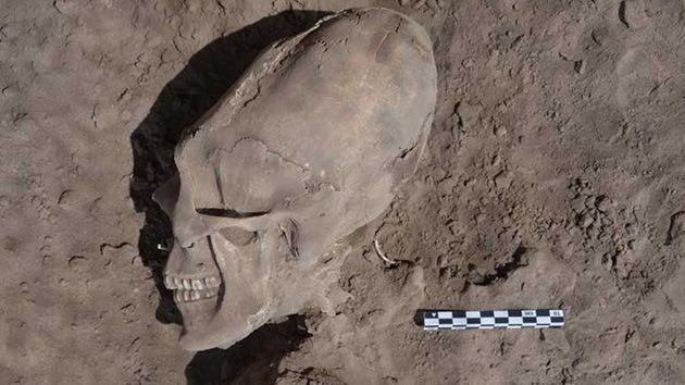 Fotos: Descubren en México un cementerio con cráneos alargados