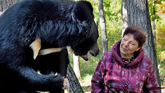 Una pareja rusa que mantenía a 10 osos los suelta en el bosque