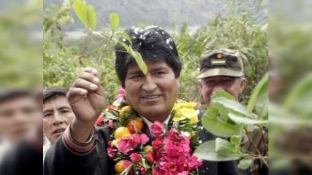 Evo Morales propone legalizar siembra de coca en Bolivia