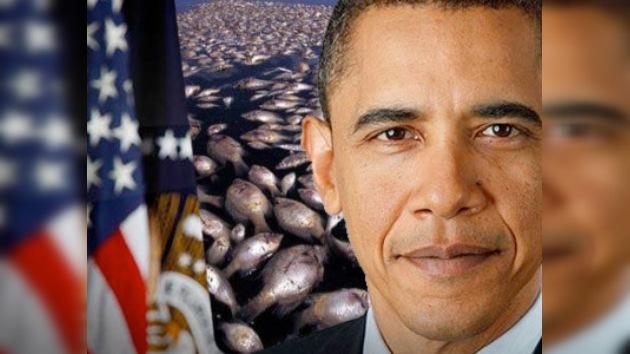 En la cena de cumpleaños de Obama servirán mariscos del Golfo de México