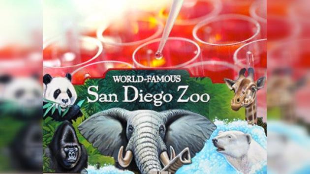 Células madre podrían viabilizar un 'Parque Jurásico' en San Diego