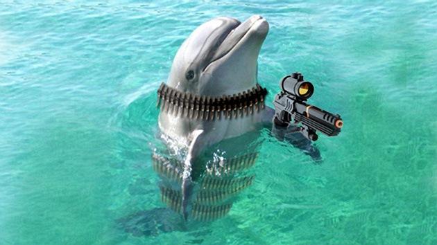 Ucrania reanuda oficialmente el entrenamiento de 'delfines soldados'