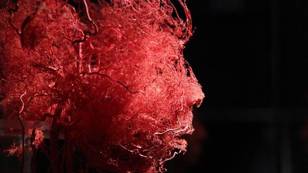 Diseñan micropartículas que permiten al hombre vivir sin respirar