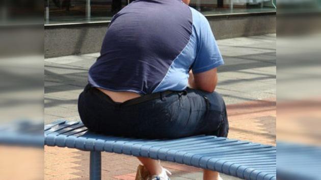 Científicos japoneses descubrieron que la ausencia de un gen provoca la obesidad