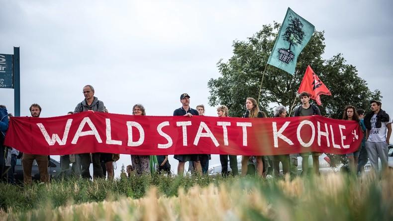 Polizei rückt in Hambacher Forst vor - Baumhäuser sollen bleiben