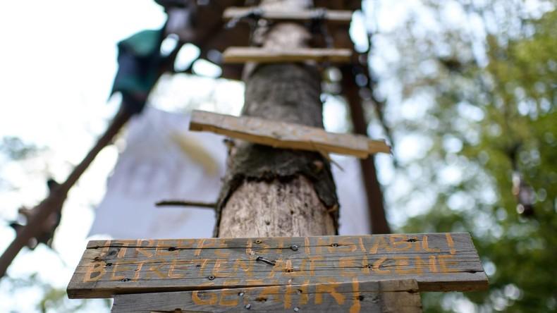 NRW-Landesregierung setzt Räumung im Hambacher Forst vorerst aus