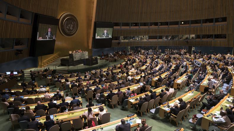 """""""Verfahrensfehler"""": Deutschland lehnt russischen UN-Resolutionsentwurf zum INF-Vertrag ab"""