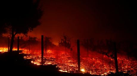 Brennender Weinberg in Thousand Oaks am vergangenen Freitag