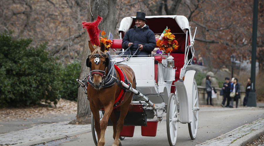 'F*ck no, I'm not apologizing': Hip-hop mogul compares horse carriages to the Holocaust