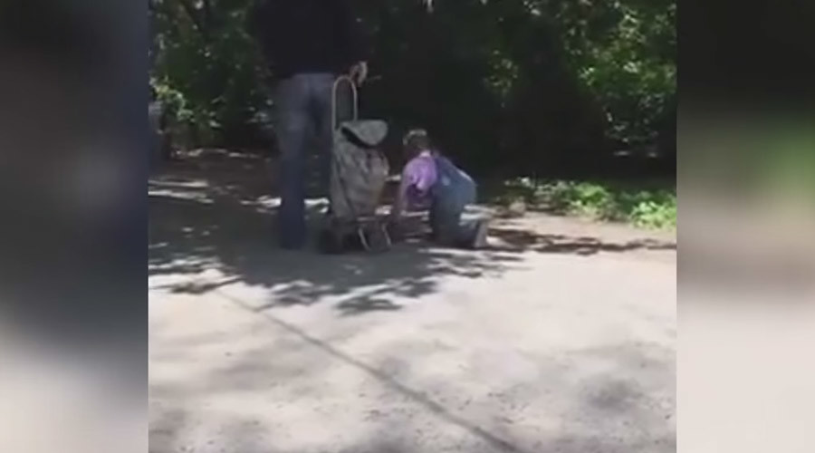 Girl's walk on a leash in park prompts child abuse probe (VIDEO)