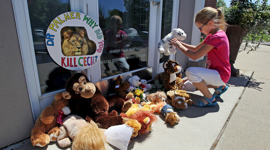 Resident Autumn Fuller, 10, places a stuffed animal at the doorway of River Bluff Dental clinic in protest against the killing of a famous lion in Zimbabwe, in Bloomington, Minnesota July 29, 2015. ©Eric Miller